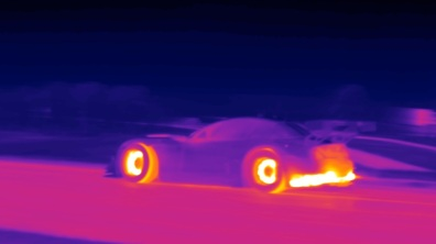 flir-bmw-oak-tree